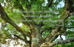 Influence and Leadership John Maxwell Quote Theresa Singletary